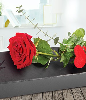 Image of All of Me, a single red rose from Oasis Flowers, Bromsgrove Florist