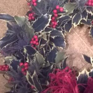 Image of Holly Christmas Wreaths from Oasis Flowers, Bromsgrove